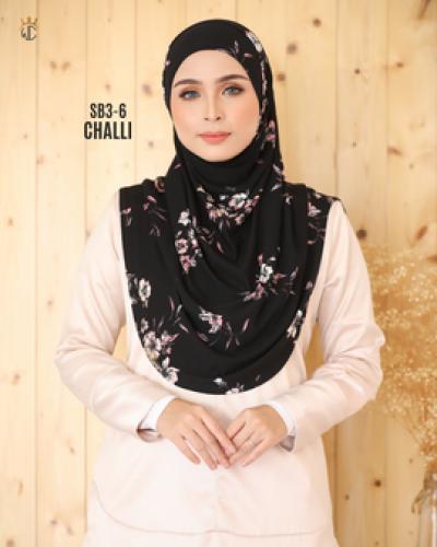 wc_sb_3-6_challi